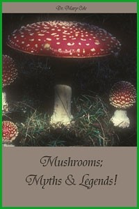 Dr-Mary-Cole-Mushrooms-Myths-Legends
