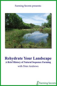 Rehydrate Your Landscape