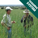 farming-system