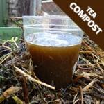 tea-compost